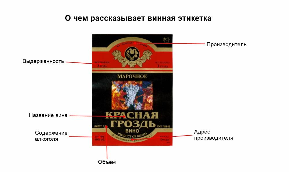 инфографика винная этикетка