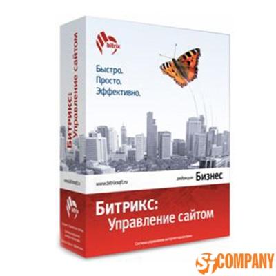 1C-Битрикс: Управление сайтом - Бизнес