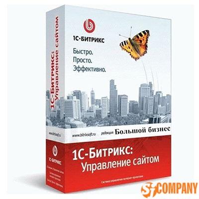 1C-Битрикс: Управление сайтом - Большой бизнес